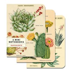 Mini Notebook 3er Set Kakteen und Sukkulenten