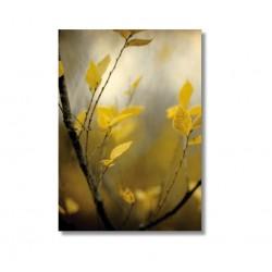 "Alicia Bock Karte ""Autumn"""