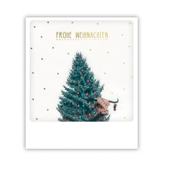 "Pickmotion Karte ""Frohe Weihnachten Galloway"""