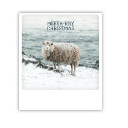 "Pickmotion Karte ""Meeeh-rry Christmas"""