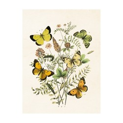 "Vintage Mini Poster ""Schmetterlinge"""