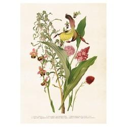 Vintage Poster Blumen Mix