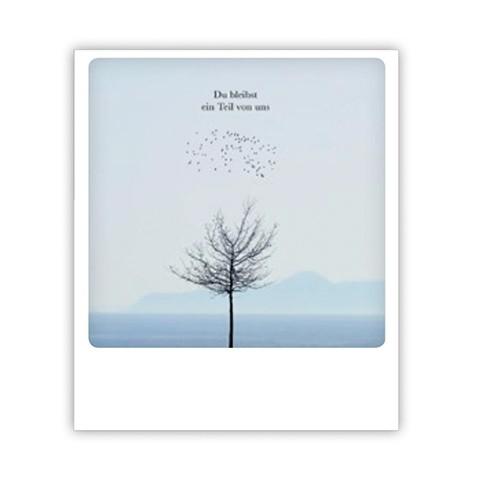 Pickmotion karte du bleibst ein teil von uns shabby - Polaroid karten ...