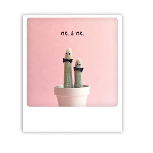 Pickmotion karte mr and mr cactus shabby - Polaroid karten ...