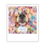 """Pickmotion Karte """"Rieche ich da Torte Hund"""""""