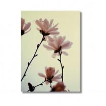 "Alicia Bock Karte ""Pink Magnolia"""