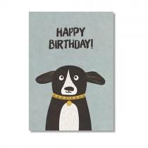 """Karte Ava & Yves Hund """"Happy Birthday"""""""
