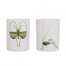 Teelichter Set INSECTS