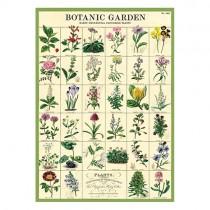 """Poster """"Botanic Garden"""""""