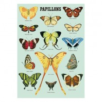 """Poster """"Papillons"""""""
