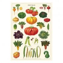 """Poster """"Vegetables"""""""