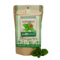 """Minigarten """"Anis Minze"""""""