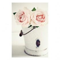 """Bild """"rosa Rosen"""""""