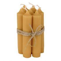 Stabkerzen 10er Set Mustard