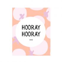 """Mini Geschenkbox """"Hooray Hooray"""""""