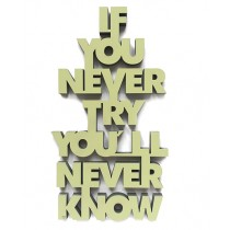 "3D Schrift ""If you never try you'll never know"""