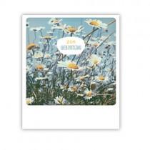 """Pickmotion Karte """"Blumen Geburtstag"""""""