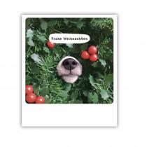 "Pickmotion Karte ""Frohe Weihnachten Hundeschnauze"""