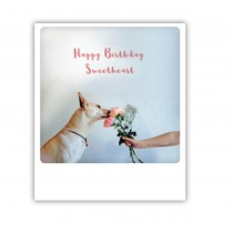 "Pickmotion Karte ""Happy Birthday Sweetheart"""