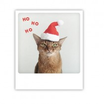 "Pickmotion Karte ""Ho Ho Ho Cat"""