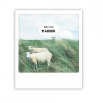 """Pickmotion Karte """"Ich will Mähhhr"""""""