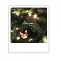 "Pickmotion Karte ""It's Christmas Time"""