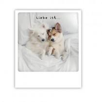 """Pickmotion Karte """"Liebe ist..."""""""