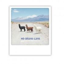 "Pickmotion Karte ""No Drama Lama"""