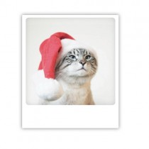 "Pickmotion Karte ""Christmas Cat"""