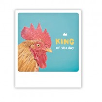 "Pickmotion Karte ""King of the day"""