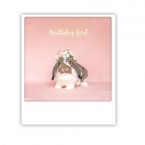 """Pickmotion Karte """"Birthday Girl Hase"""""""