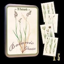Vintage Karten Set GRÄSER