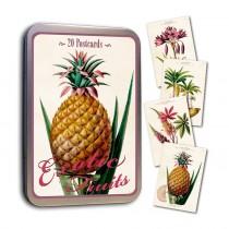 Vintage Karten Set Exotic