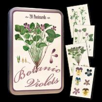 Vintage Karten Set VEILCHEN