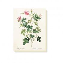 """kleine Vintage Klappkarte """"Rose"""""""