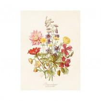 "Vintage Mini Poster ""Sommerblumen"""