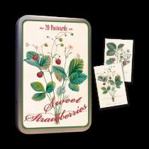 Vintage Karten Set Erdbeeren