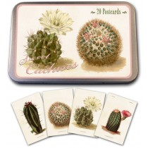 "Vintage Karten Set ""Kakteen"""