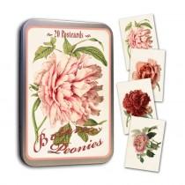 Vintage Karten Set Pfingstrosen