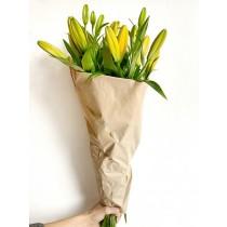 Lilien Gelb, 5 Stück (Nur Ladenabholung)