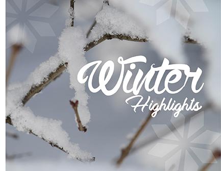 Winter Highlights